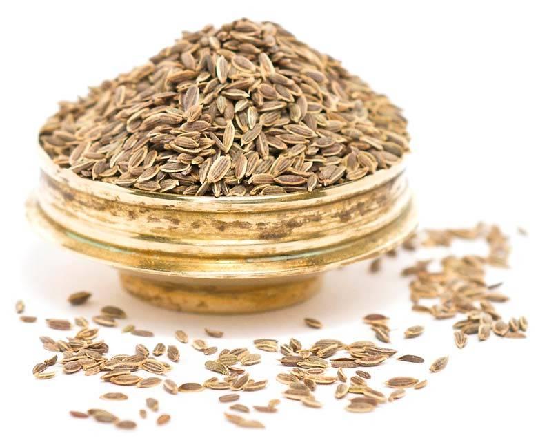 SUVA GM (Dill Seeds)