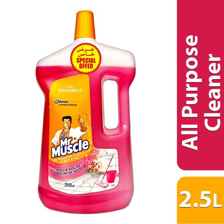 MR. MUSCLE WITH GLADE ALL PURPOSE CLEANER - FLORAL
