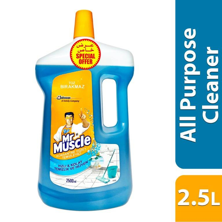 MR MUSCLE WITH GLADE APC UNIVERSE RELAXATION -