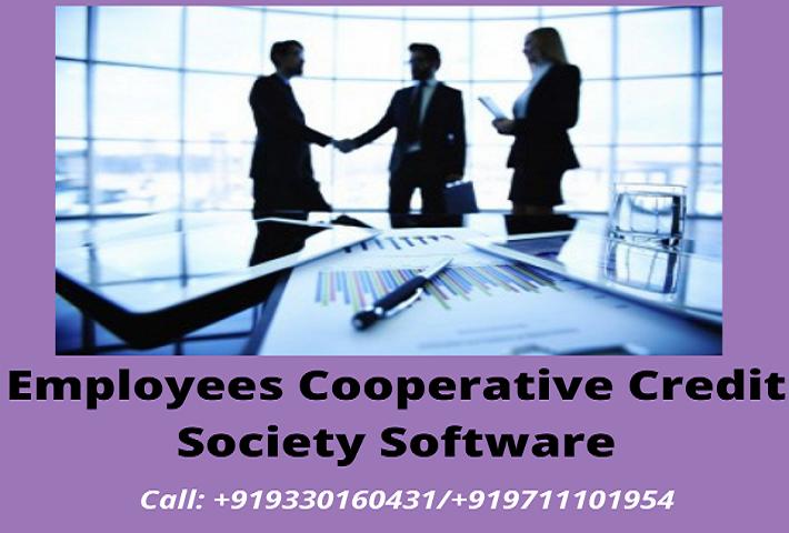 ECCS Software