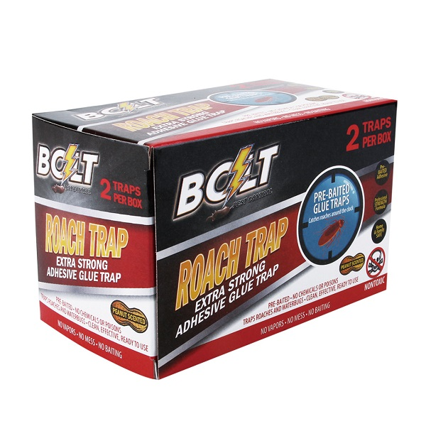 Bolt Pest Roach Trap 2PK