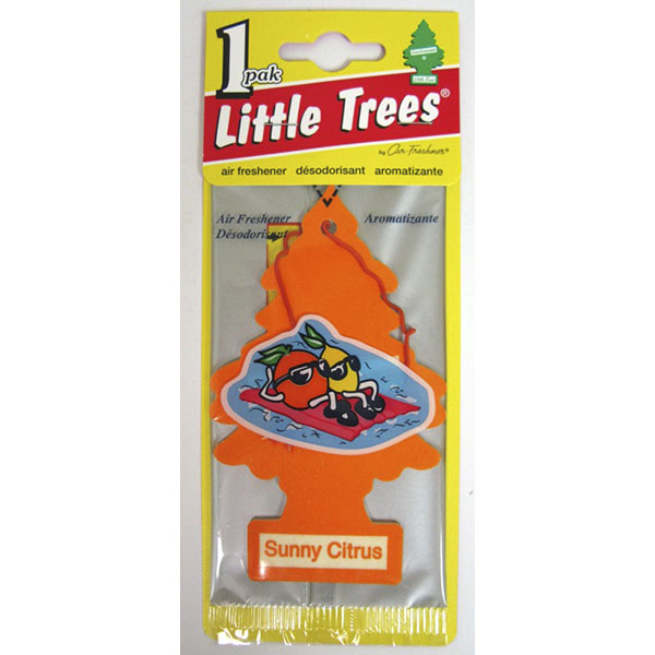 LITTLE TREE C.F. *MOROCCAN MINT TEA*