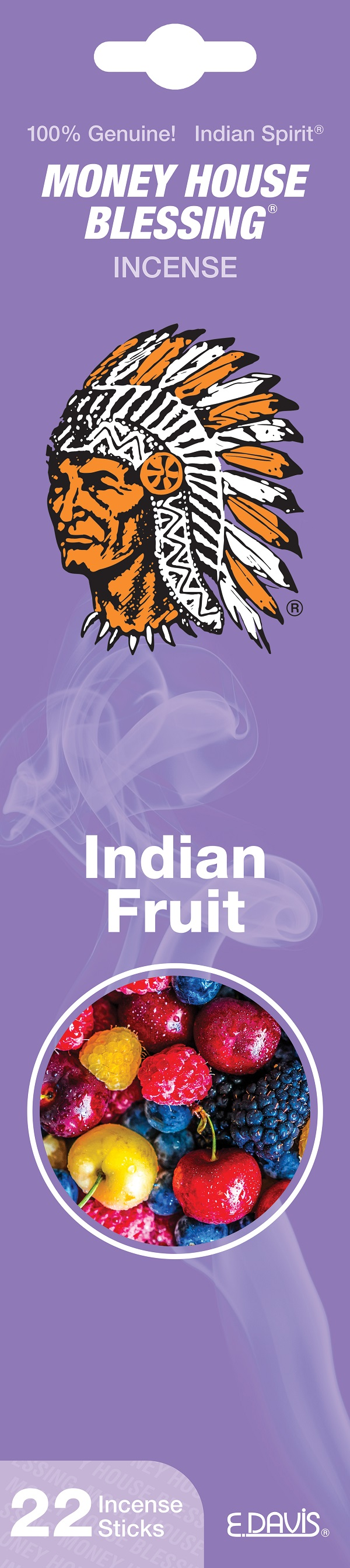 MONEY HOUSE BLESSING INCENSE 22'S *INDIAN FRUIT*
