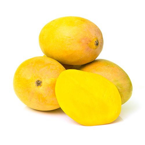Alphonso Mango - Ratnagiri