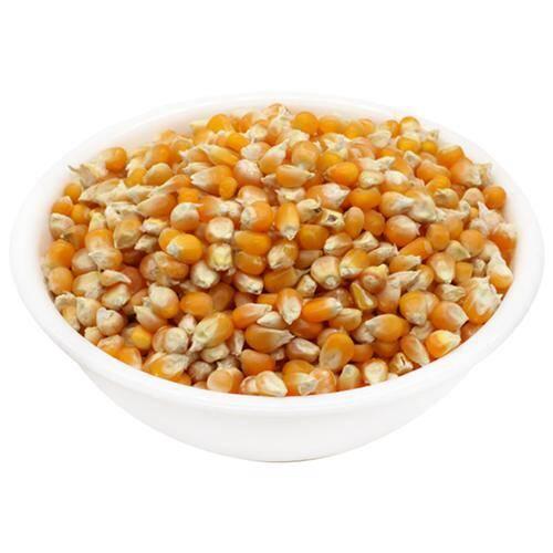 Popcorn Seeds 200Gms